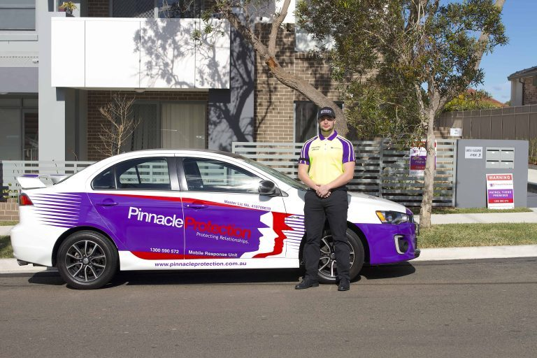 Pinnacle Protection - Professional Security